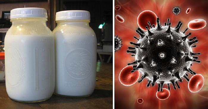lapte de capră varikoz